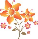 Orange flower illustration. Illustration of a beautiful orange flower on white background Stock Image