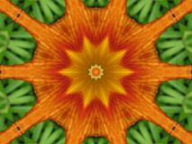 Orange flower kaleidoscope Stock Photography