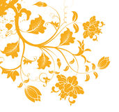 Orange flower pattern silhouette Stock Photography