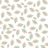 Orange flower pattern on white background Stock Images