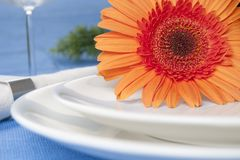 Orange flower and plates Stock Images