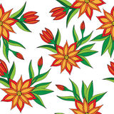 Orange flower seamless pattern on the white background Stock Images