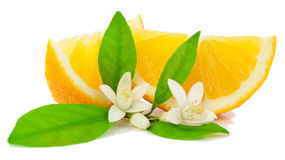Orange, flower and slice. Royalty Free Stock Photo