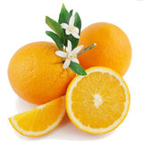 Orange, flower and slice. Orange, flower and slice  on a white background Royalty Free Stock Photography