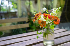 Orange flower on the table. Orange tone flower in the glass vase on the wood table in the garden Royalty Free Stock Image