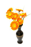 Orange flower vase Royalty Free Stock Images