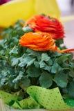 Orange flower in the vase Stock Photography