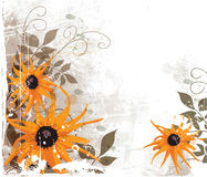 Orange flowers. Floral design, grunge abstract background Stock Photos
