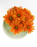 Orange flowers. Bright orange colored flowers in green pot, white background stock photo