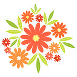 Orange flowers Stock Image
