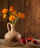Orange flowers and apples Royalty Free Stock Photography