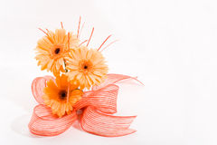 Orange flowers arrangement. Bunch of orange gerberas with ribbon with space for text Stock Images
