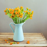 Orange flowers in blue jug Stock Photography