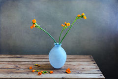 Orange flowers in blue vase Stock Photos