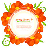 Orange flowers circle vector frame Stock Images