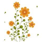 Orange flowers on curling stems.