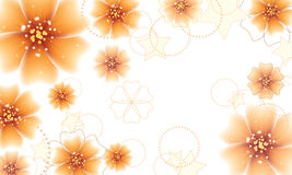 Orange flowers design Stock Photo
