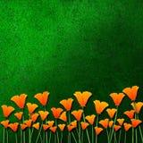 Orange flowers on green grass Stock Photography