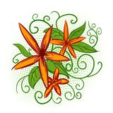 Orange flowers with green leaves Stock Photography
