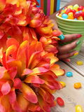 Orange flowers with jelly beans in a teacup. Orange flowers with a book and multi-colored jelly beans in the background royalty free stock photos