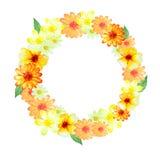 Orange flowers paint circle frame Stock Photo
