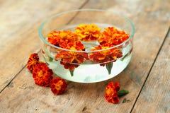 Purple flowers spa in glass bowl. Orange flowers (Tagetes) spa in glass bowl on wooden background Stock Photo