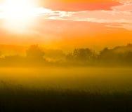Orange fog Royalty Free Stock Photo
