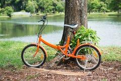 Orange folding bicycles in park Royalty Free Stock Image