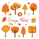 Orange forest colorful collection Royalty Free Stock Image