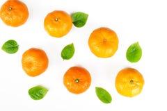 Orange fraîche avec la lame verte Photographie stock