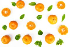 Orange fraîche avec la lame verte Image stock