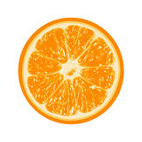 Orange fraîche d'isolement sur le fond blanc illustration stock