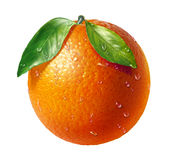 Orange fresh fruit with two leaves and water dropl Stock Image