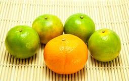 Orange fresh fruit Stock Photography