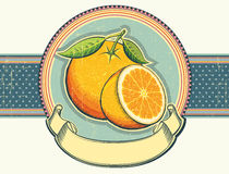Vintage label illustration on old paper.Orange fre Stock Image