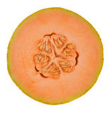 Orange fresh  melon Stock Photography