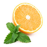 Orange and fresh mint. Orange and mint. Isolated over white Royalty Free Stock Image
