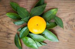Orange fresh tangerine on wooden background.  Royalty Free Stock Photo