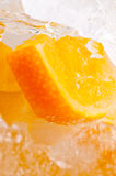 Orange froit Royalty Free Stock Images