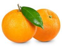 Orange Frucht Lizenzfreie Stockbilder