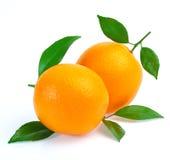 Orange Frucht getrennt auf weißem Hintergrund Stockbilder