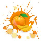 Orange Frucht-Logo Watercolor Splash Design Fresh-Naturkost Stockfoto