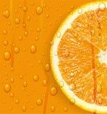 Orange Frucht mit Wasser lässt Hintergrund fallen. Lizenzfreies Stockbild