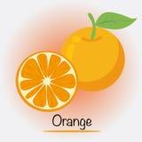 Orange Fruchtvektor Stockfotos