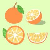 Orange Fruchtvektorillustration Stockfotos