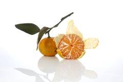 Orange Fruchtweißhintergrund Lizenzfreie Stockbilder