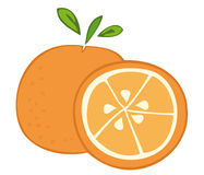 Orange fruit. Illustration of a Orange fruit Stock Photography
