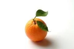 Orange fruit. An orange on a white backgroud stock images