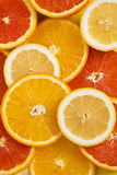 Orange fruit background with lemon and red orange Royalty Free Stock Photo