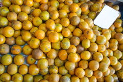 Orange fruit background Royalty Free Stock Images
